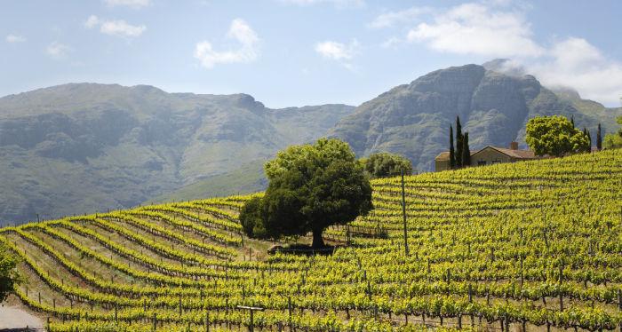 Wandern Winelands Stellenbosch