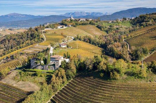 E28 Weinberge im Collio bei Cividale Turismo FVG_2