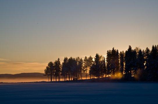 Abendsonne Schwedisch Lappland