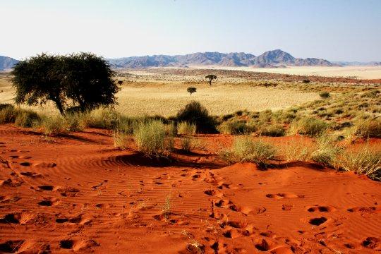 Aussicht in die Namib
