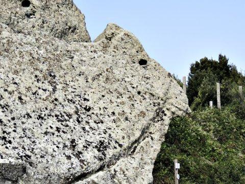 Ischia Kamel aus Stein_2