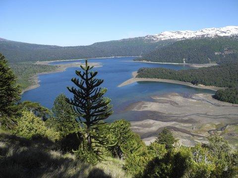 Blick zum Lago Conguillio