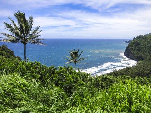 Hawaii Polulu Valey
