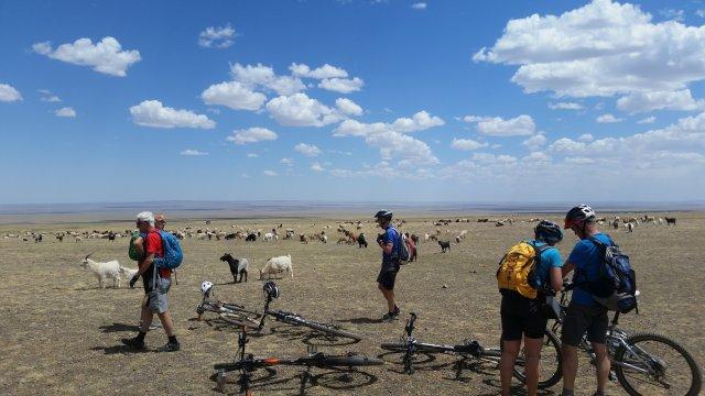 Mongolei-MTB-Land-ohne-Zäune