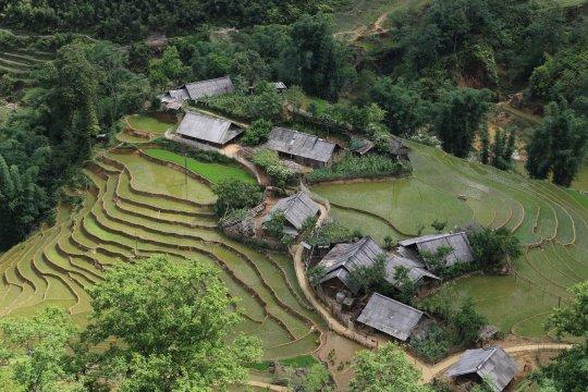 Dorf bei Sapa