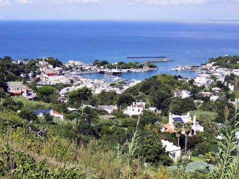 Ischia Wanderung Weinberge mit Blick auf Hafen
