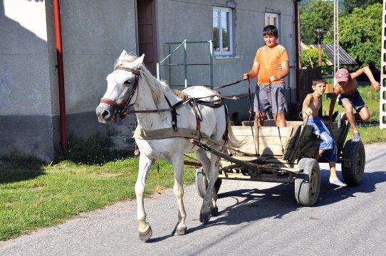 Fuhrwerk in Herrmannstadt