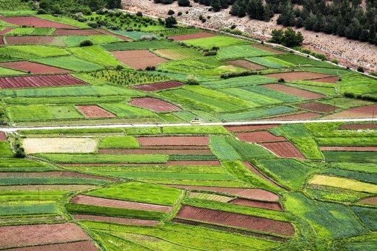 Fruchtbare Täler im Hohen Atlas