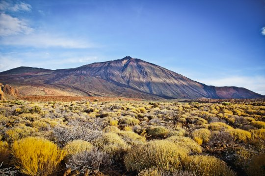 Landschaft am Pico del Teide_Fotograf_Aleksandar Todorovic