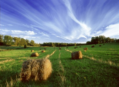 Naturidylle in Lettland
