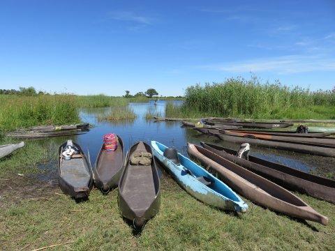 Botswana-Okavango-Delta-Mokoro-Ausflug-Kajaks