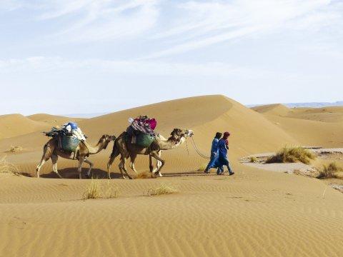Mit Kamelen in der Wüste unterwegs_2