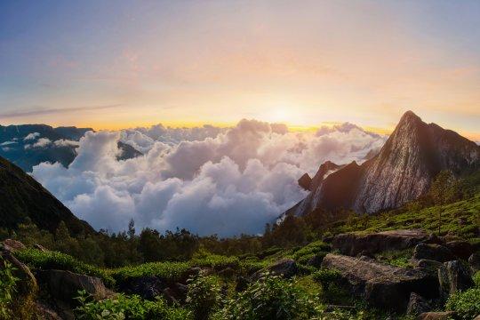 Blick auf den Meesapulimala Peak