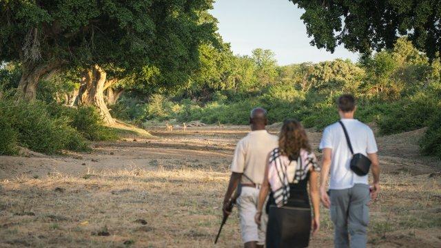 Gruppe auf Fusspirsch in Mtomeni