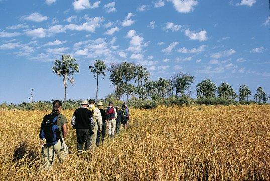Wandern in Botswana