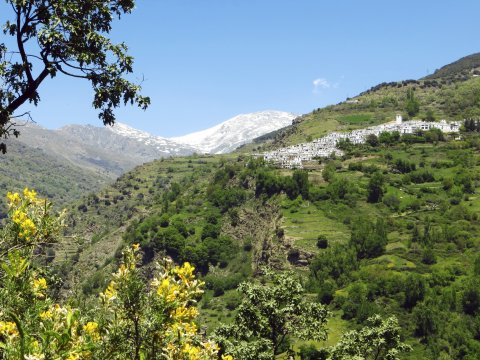 Weisses Dorf Alpujarra Andalusien_2
