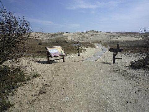 Kurische Nehrung Nationalpark Duene
