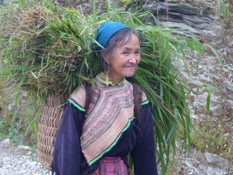 Hmong in Nordvietnam