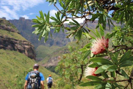 Wanderung auf dem Tugela Gorge Walk
