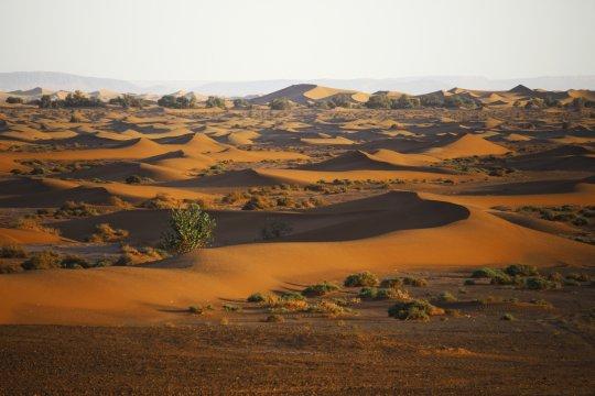 Marokko Sahara Erg Chegaga_2