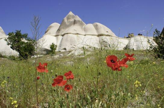 Weißes Tal in Kapadokien