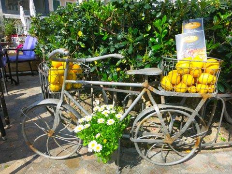 Frisches Obst in Sóller