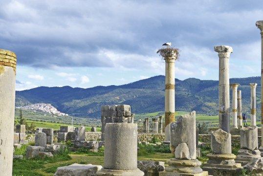 Volubilis Roemische Ruinen