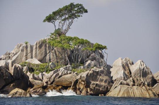 Insel bei Mahe_2