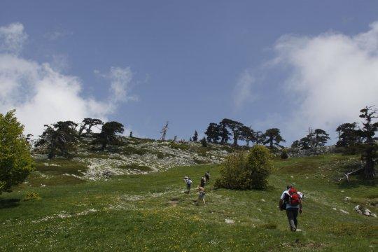 Italien_Kalabrien_Wandern_in_Kalabrien