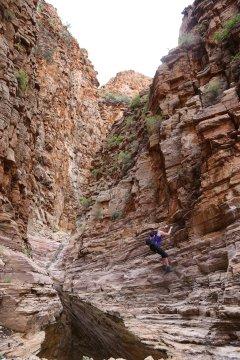 Namibia-Olive-Trail