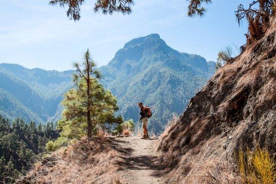 Bergwandern La Palma