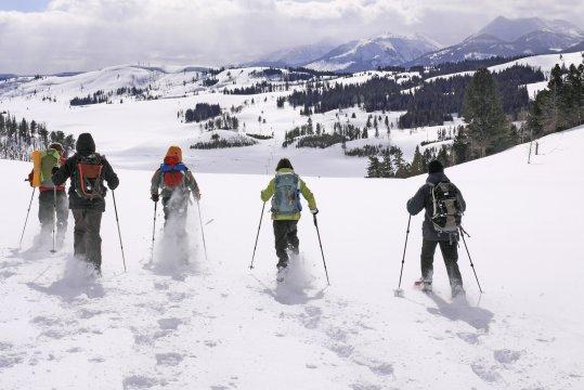 Schneeschuhgruppe Yellowstone