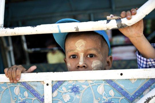 Hpaan neugieriger kleiner Burmese_2