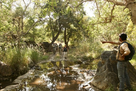 Wandern in Rajasthan