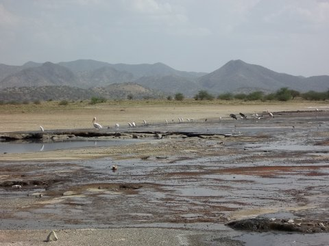 Kenia-Lake-Magadi
