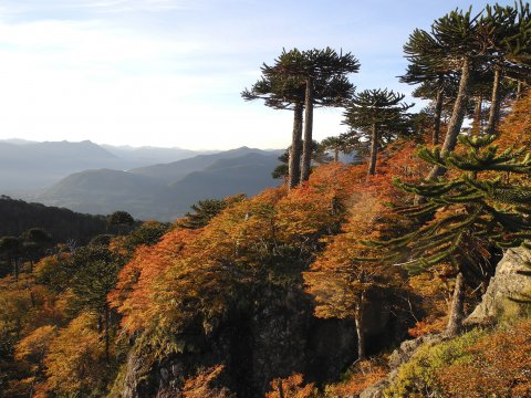 Herbst Seenregion_2
