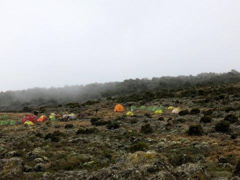 Tansania-Shira-Camp
