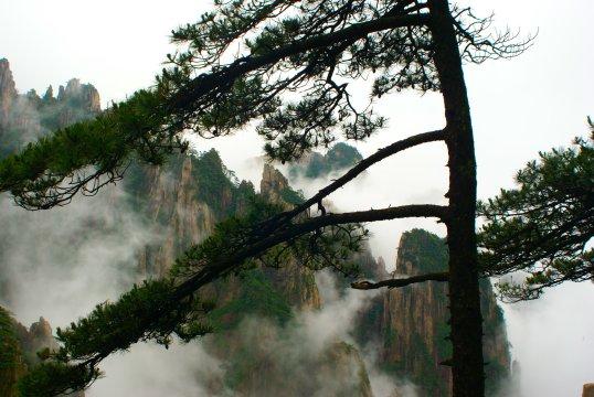 China-Huang-Shan-Bergspitzen