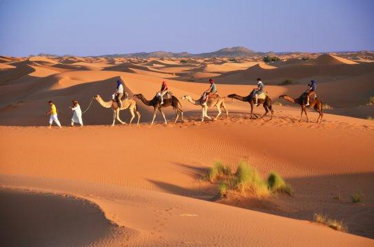Trekking im Wüstentakt