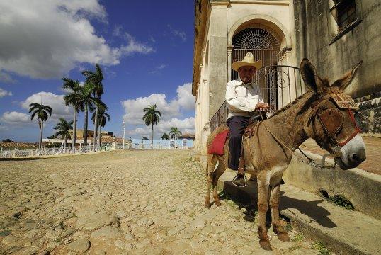 Esel auf der Plaza in Trinidad