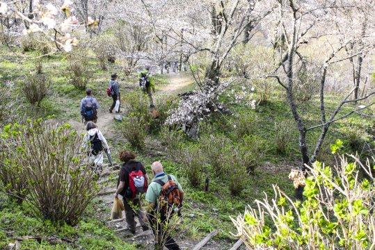 Yoshino Wanderung Hauser Gruppe_2