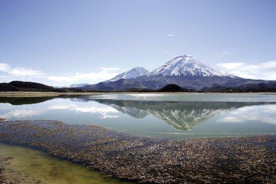 Am Lago ChungaraAm Lago Chungara Chile_2