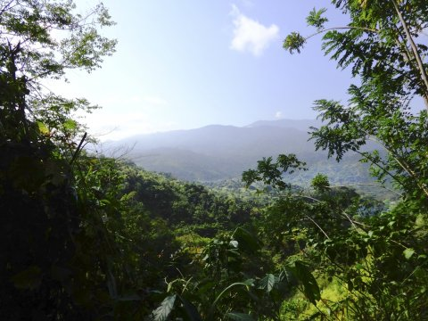 nahe Lagune Guatavita_2