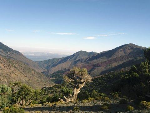 Bergblick im Hohen Atlas_2