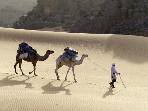 Mit Kamelen durch die Wüste