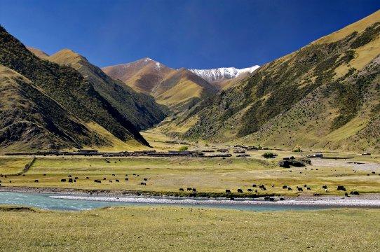 Landschaft in Zentral Tibet
