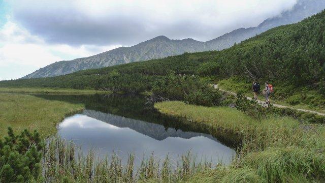 Wanderung zum weißen Teich