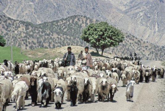 Bakhtiari Nomaden im Bazoft Tal