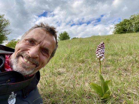 Reiseleiter auf Orchideenwiese