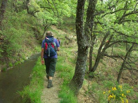 Unterwegs in den Alpujarras